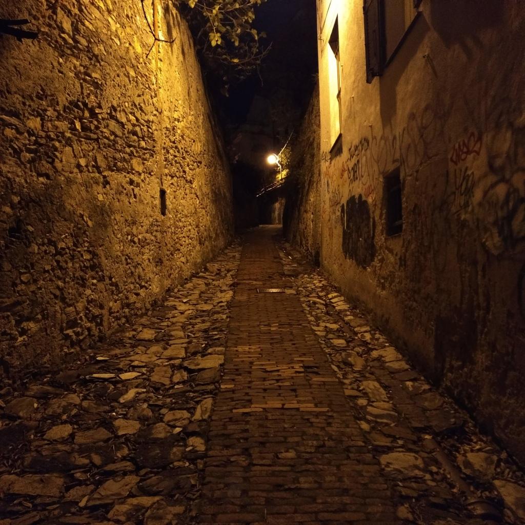 Petit chemin menant vers les hauteurs résidentielles de Gênes. Tracé de briques au sol typique des petits chemins qui parcourent certaines parties anciennes de la ville.